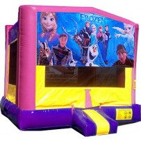 (C) Frozen Pink or Blue Bounce House
